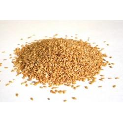 Siemię Lniane Złote 1kg